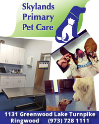 Veterinary Medicine and Animal Hospital in Ringwood, NJ