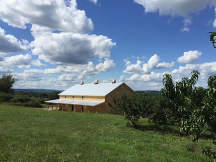Pennings Farm Cidery Blue Skies small