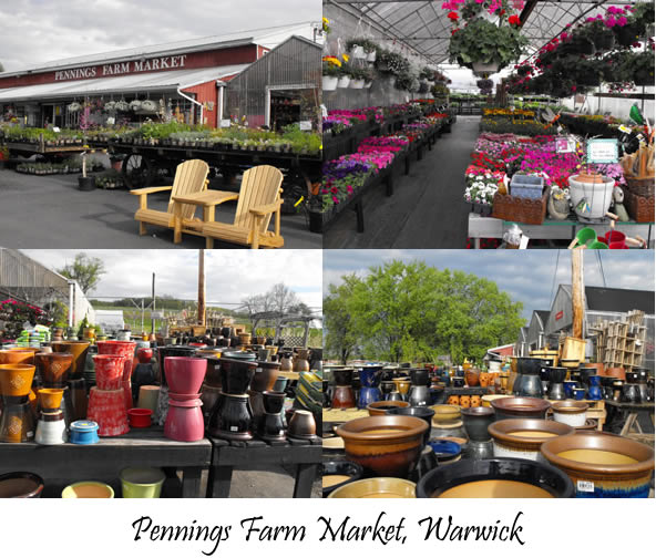 The Spirit Of Gardening Centers 5 4 5 11 Warwick Valley Living